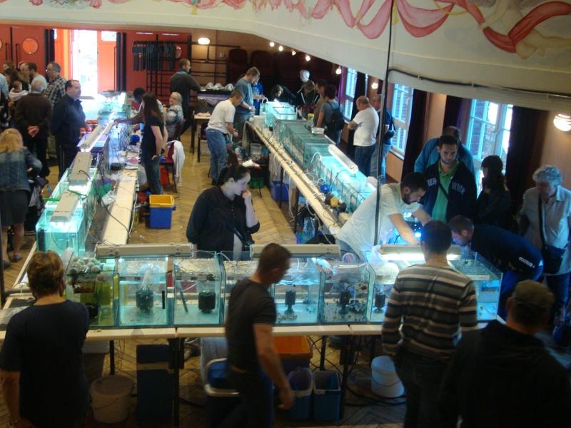 Bourse aux Poissons a mondidier Dsc01630