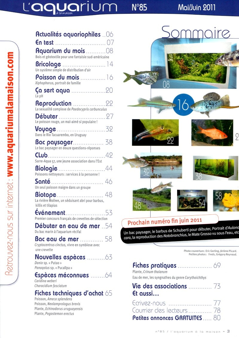 L'aquarium à la maison n° 85 - Mai/Juin 2011 Img00412