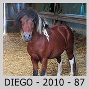 Galop Pour La Vie Diego010