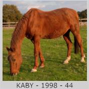 Galop Pour La Vie Kaby210