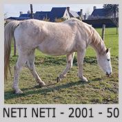 Galop Pour La Vie Neti0510