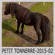 Galop Pour La Vie Petitt10