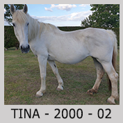 Galop Pour La Vie Tina0510