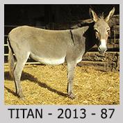 Galop Pour La Vie Titan010
