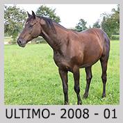 Galop Pour La Vie Ultimo10