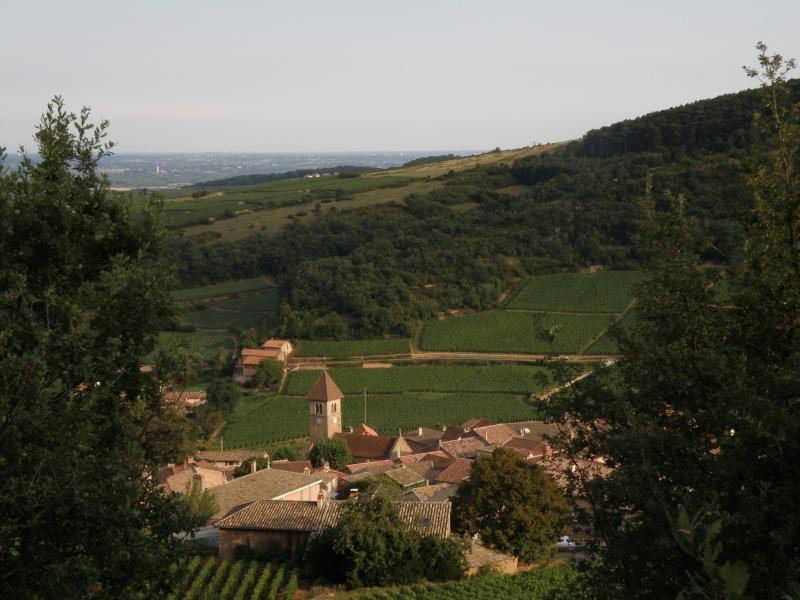 la roche de Solutré Bourgo14