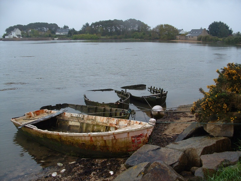 Appel à la nostalgie des épaves de bateaux Locoal10