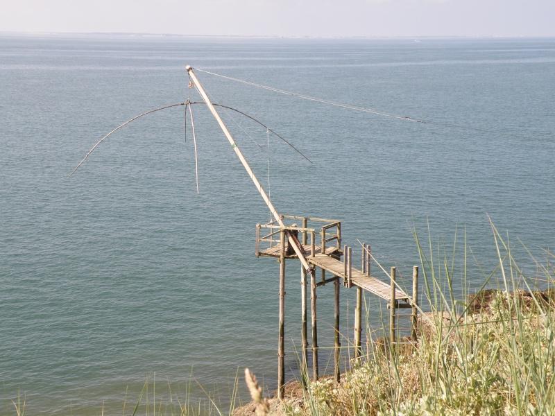 Pêche à pied sur la côte de Jade Pornic17