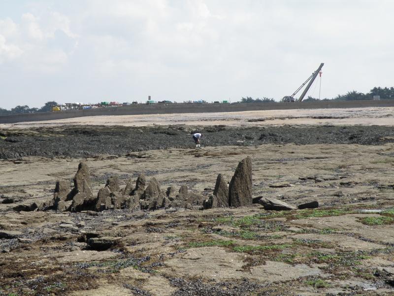 Pêche à pied sur la côte de Jade Pornic25