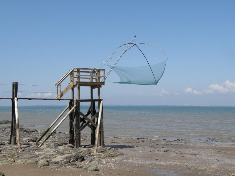 Pêche à pied sur la côte de Jade Pornic26
