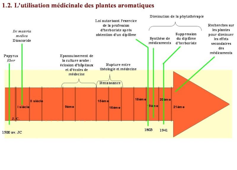 Les plantes aromatiques dans l'histoire du pourtour méditerranéen Diapo10