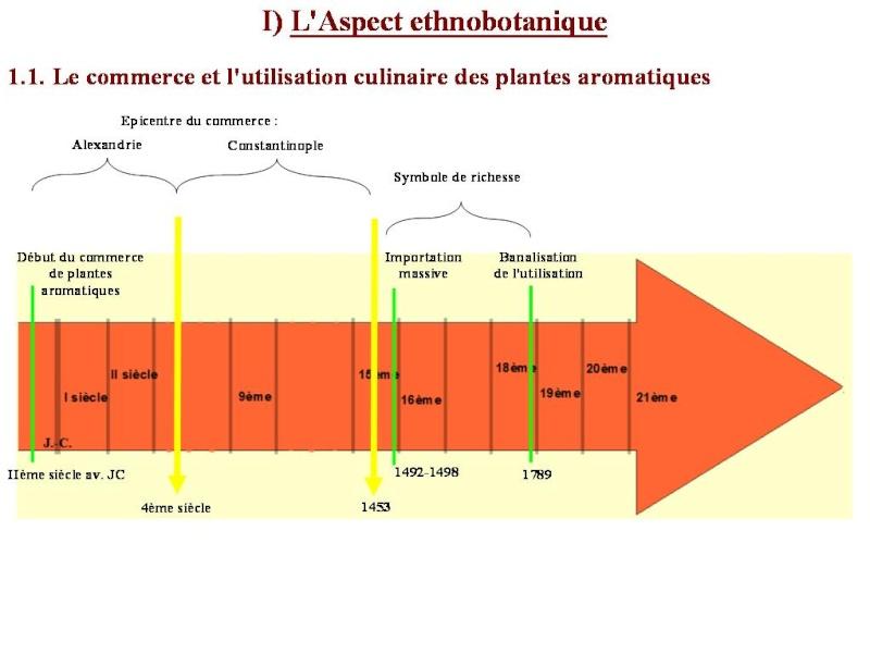 Les plantes aromatiques dans l'histoire du pourtour méditerranéen Frise11