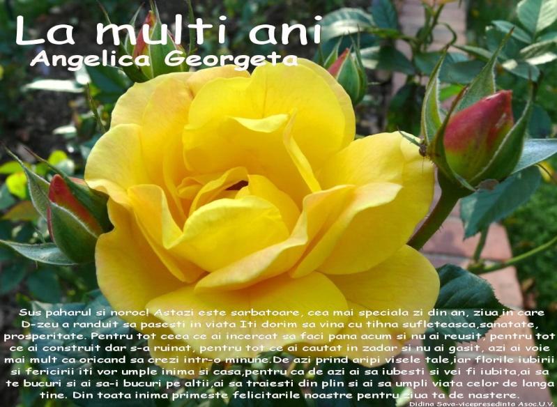 La Multi Ani ! - Pagina 2 Angeli10