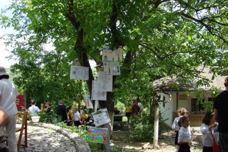 """Sărbătoarea Copilăriei-eveniment organizat de Asociatia Universul Prieteniei si Lansare de carte """"Printul Andrico""""-Adelina Ciocan-01 iunie 2011 Bojdea50"""