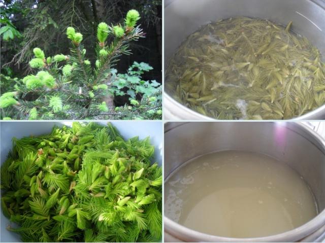 Dulceţuri tradiţionale, siropuri, gemuri, compot pt.iarna şi fructe confiate. Clip_620