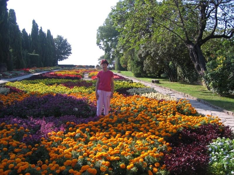 Flori...flori...si numai flori...TOAMNA Clip_814
