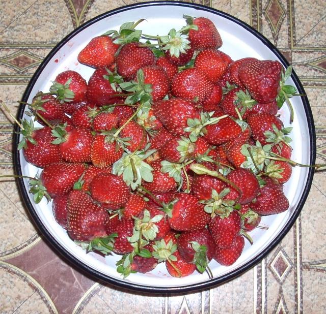 Dulceţuri tradiţionale, siropuri, gemuri, compot pt.iarna şi fructe confiate. Dulcea10