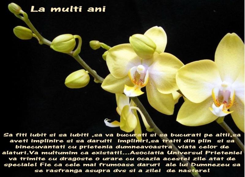 La Multi Ani ! - Pagina 2 E_marc10