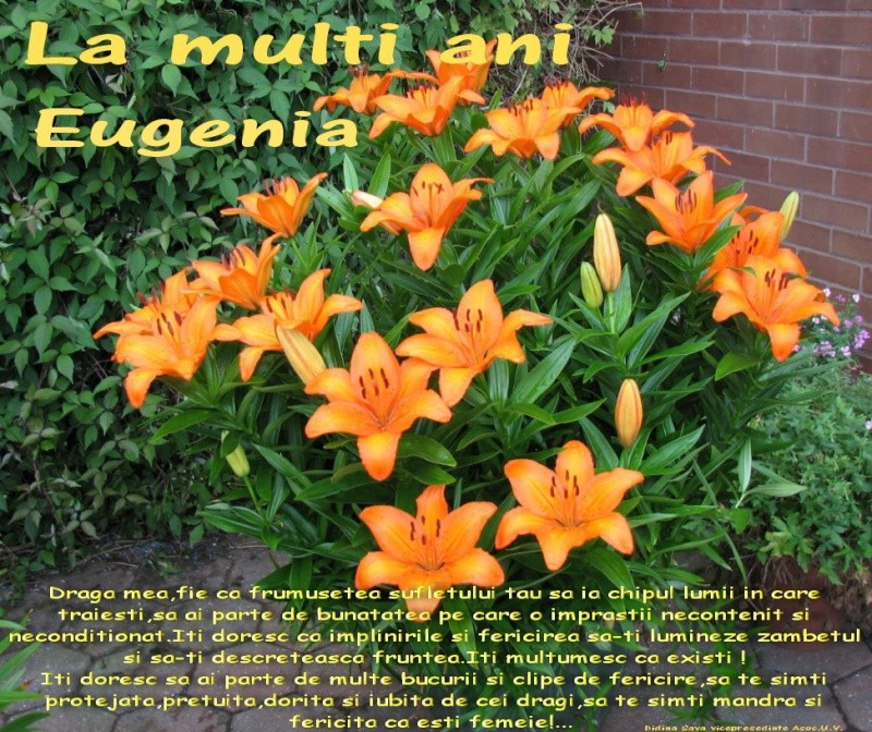 La Multi Ani ! - Pagina 2 Eugeni10