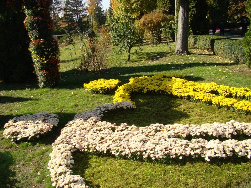 Gradina Botanica din Iasi Gradin14