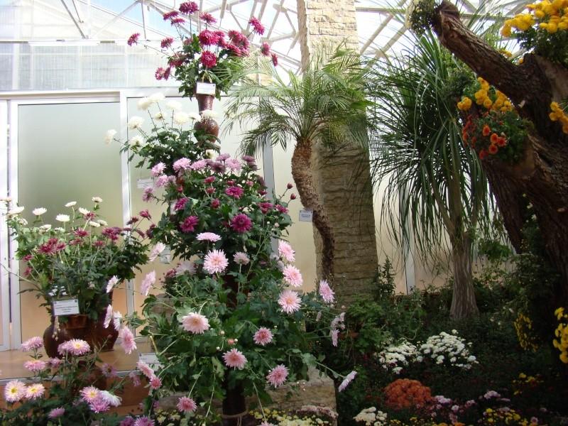 Gradina Botanica din Iasi Gradin34