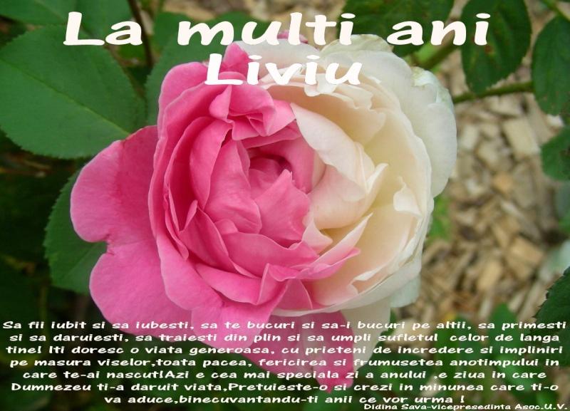 Liviu Miron-Definitii - Pagina 4 Liviu10