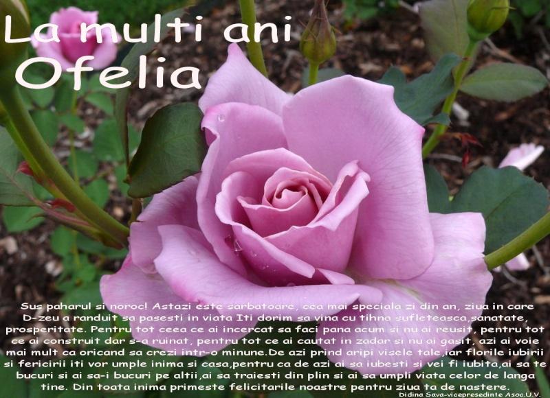 La Multi Ani ! - Pagina 2 Ofelia10