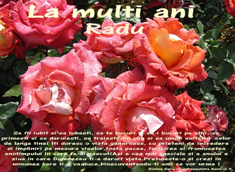 La Multi Ani ! - Pagina 2 Radu10