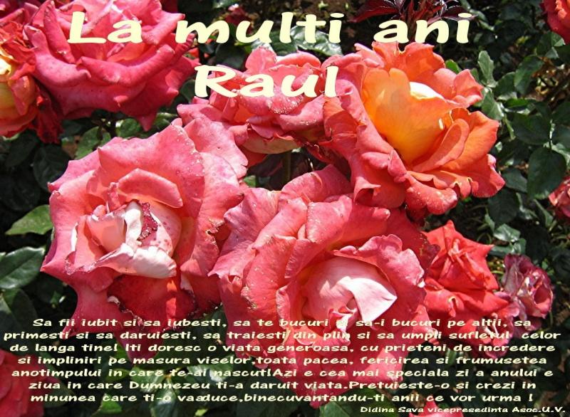 La Multi Ani ! - Pagina 2 Raul10