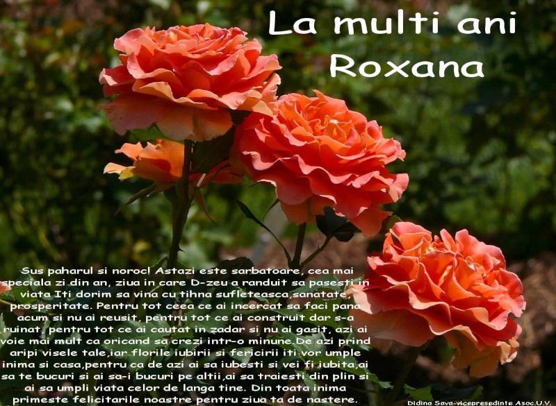 Roxana Elena Sava-lucrari de arta plastica personale Roxana11