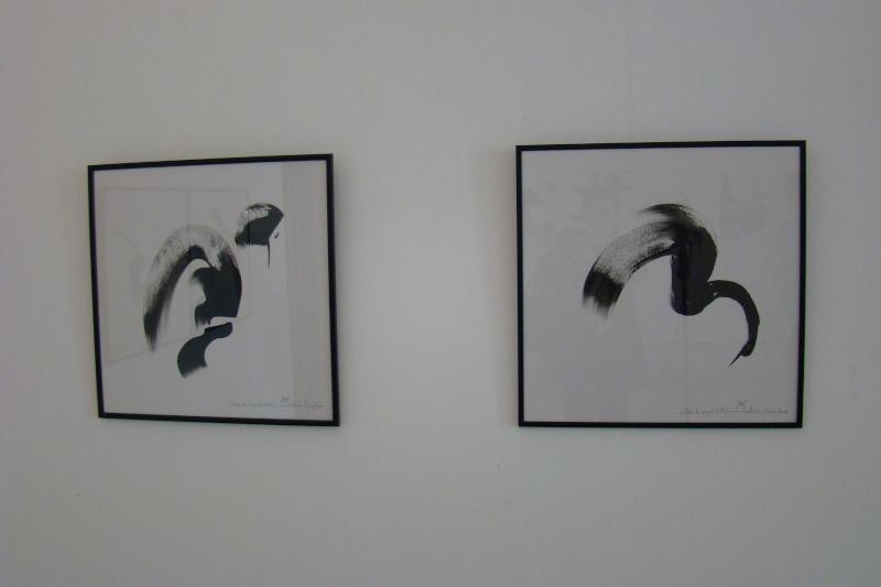 """Vernisaj expozitie:""""FERICIRILE""""-Vasilian Doboş şi """"ŞĂVÎRŞIRILE""""Florin Buciuleac-marti 14 iunie Vernis46"""