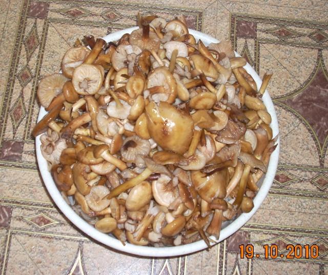 Muraturi in otet si in saramura-alte preparate(conserve din legume) pentru iarna Zacusc16