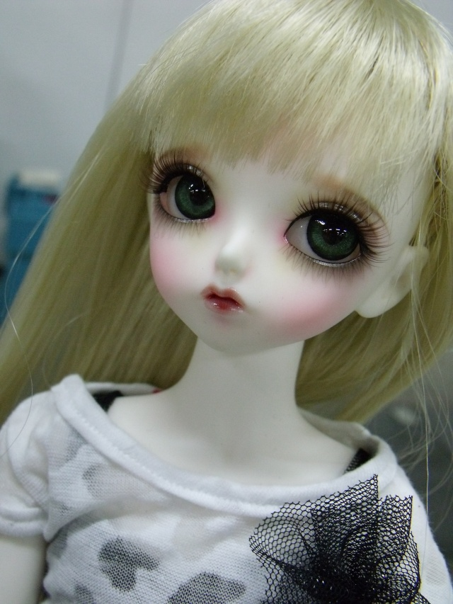 Tatiana, petite Lady bee Dscf2432