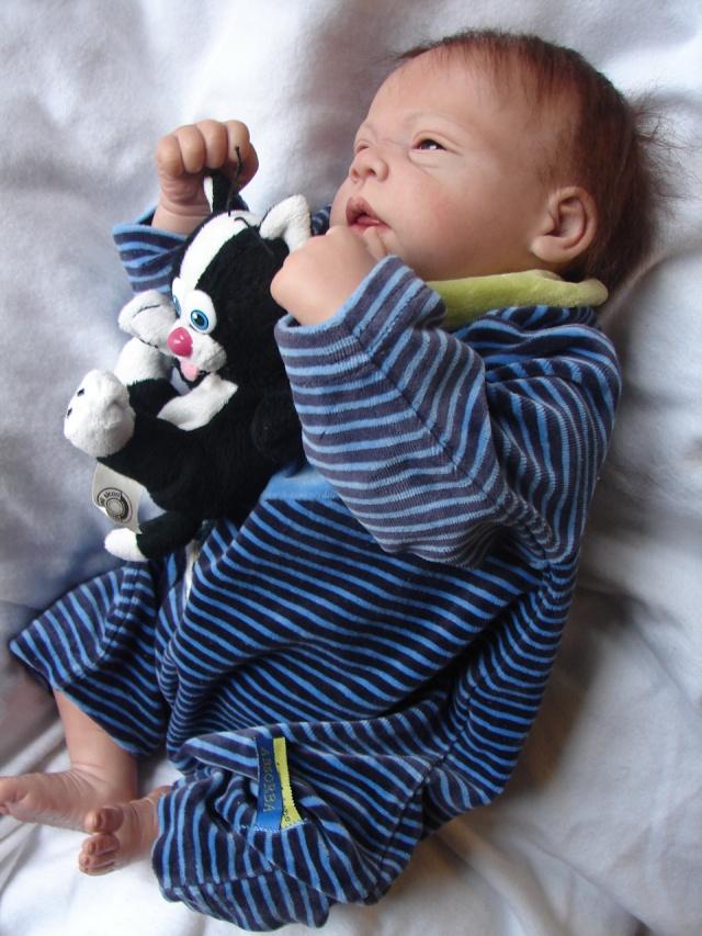 Les bébés de Tabatha - Page 4 Dsc02523