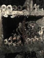 Les vins en cave Img_2410