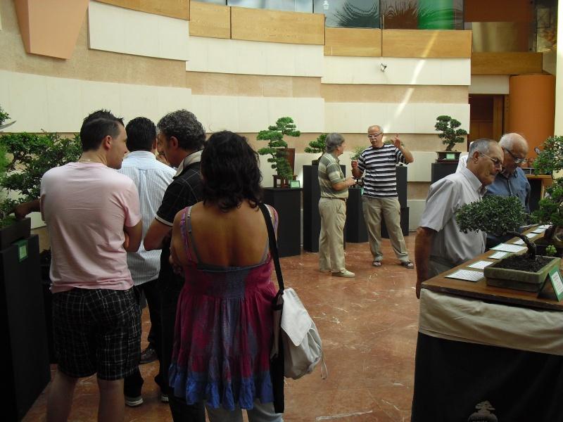 Bonsai Culture Group-Malta Annual Exhibition Cimg5310