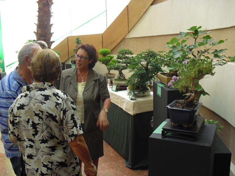 Bonsai Culture Group-Malta Annual Exhibition Cimg5312