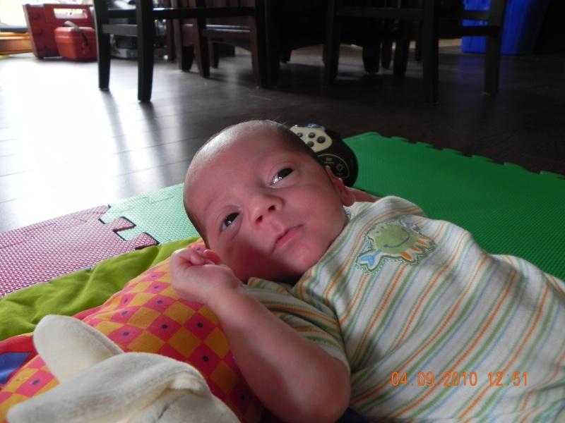 accouhement de bébé espoire mini billy +photo 8juin 2010 a 27semaine et2/7 - Page 3 Dscn2713