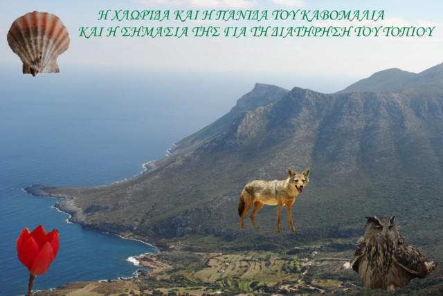 Διεθνές Συμπόσιο Πολιτιστικής κ΄Περιβαλλοντικής Κληρονομιάς και Τοπίου. Iii_110