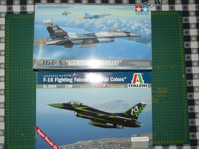 Green Lighting F-16 ADF Special colour  1-48 scale P1050510