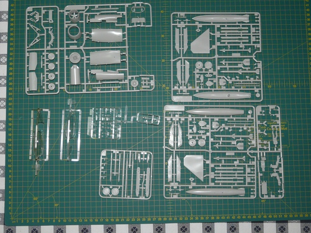 Green Lighting F-16 ADF Special colour  1-48 scale P1050512