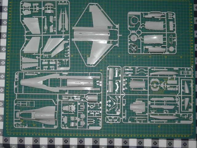 Green Lighting F-16 ADF Special colour  1-48 scale P1050513