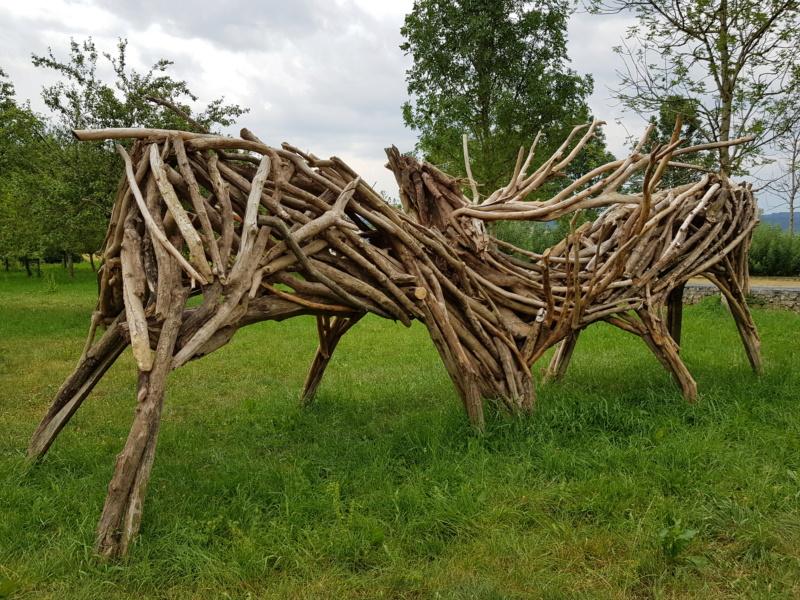 Au pays boisé des bisontins futés - Page 3 20190716