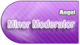 Minor Moderator