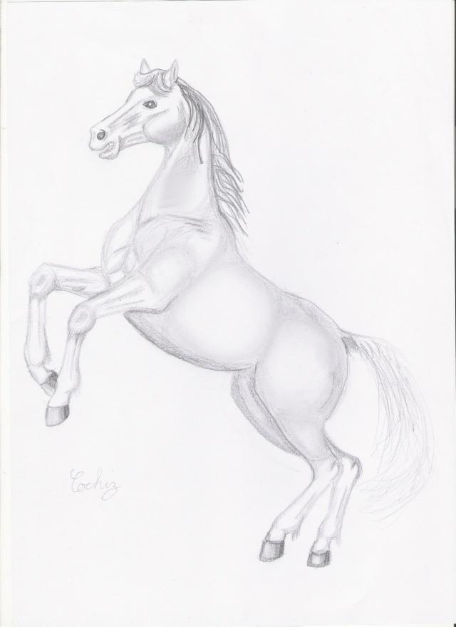 colo de poney à plusieurs (espère bien qu'il sera multicolor ^^ :p) Dessin10