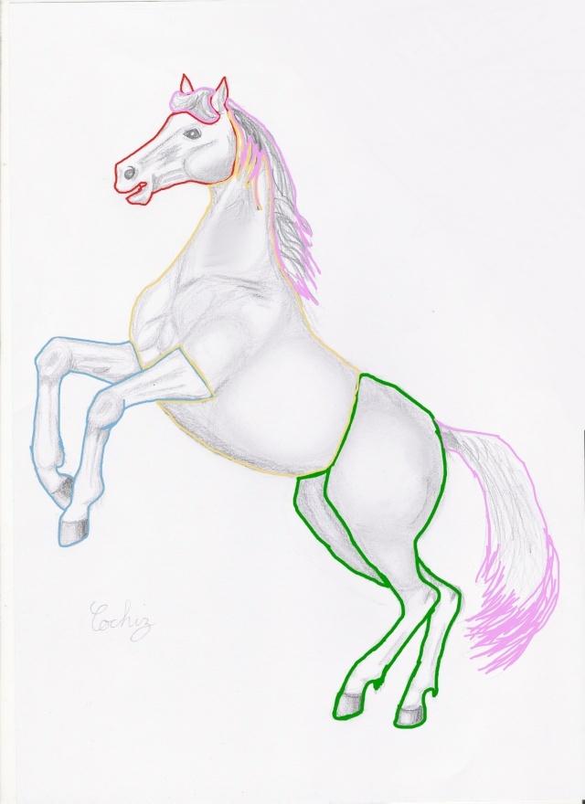 colo de poney à plusieurs (espère bien qu'il sera multicolor ^^ :p) Dessin11