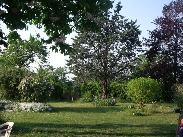 Présentez- nous des belles photos de votre région Imgp2917