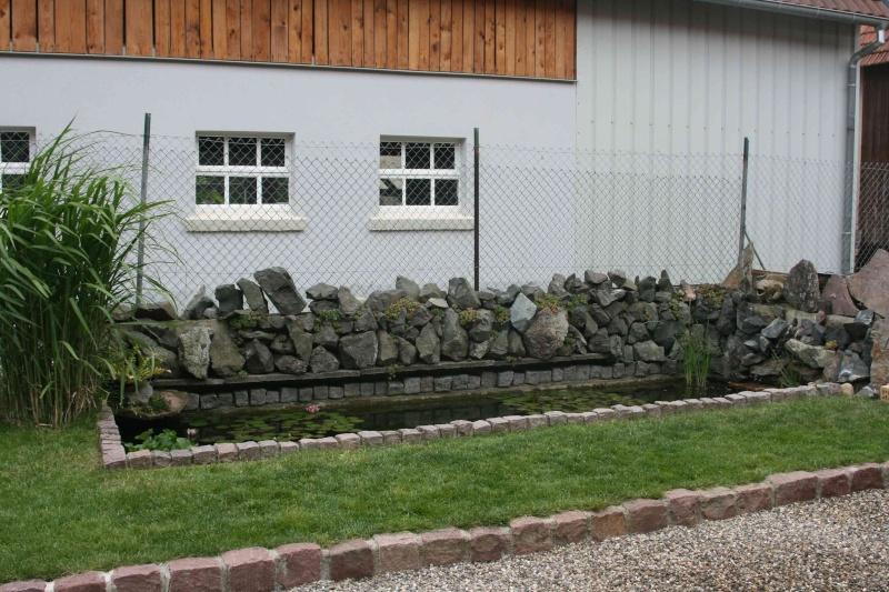 Projet de Mur Végétalisé Img_9610