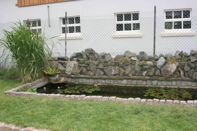 Projet de Mur Végétalisé Img_9611