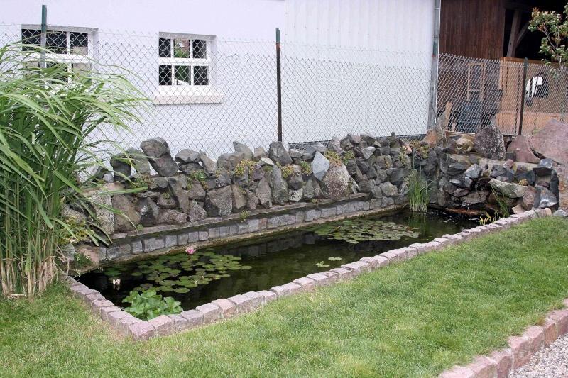 Projet de Mur Végétalisé Img_9612